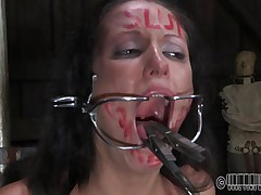 This babe wanted to to be humiliated and punished just like a wench that that babe is. Well Hailey got what that babe wanted and now she's tied up on that chair and disgraced. The executor wrote wench on her forehead and opened her mouth with a device. Wonder why? Then stick around and find out!