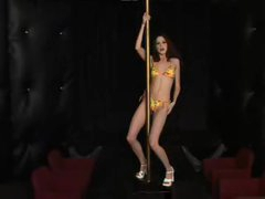 Skinny hottie works the stripper pole nude